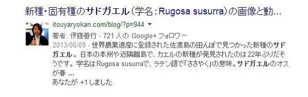 Google 著者情報表示
