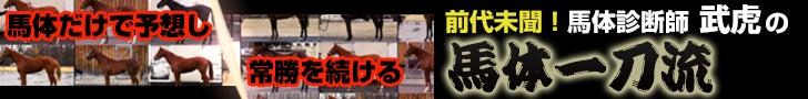 競馬最強の法則-馬体一刀流