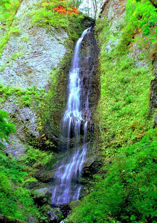 白糸の滝・降る滝・西和賀町 岩手県 | うり坊の滝見見聞録