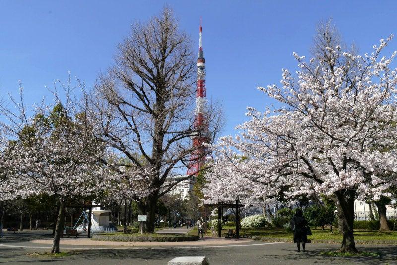 芝公園 2014.03.31
