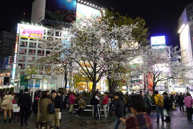 渋谷ハチ公前 2014.03.30