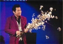 桜を持つ田山ひろし2