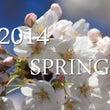 2014年 春の桜