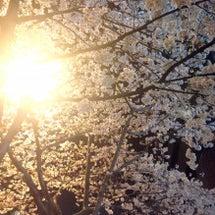 【GREENROOM…