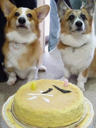 i誕生ケーキ