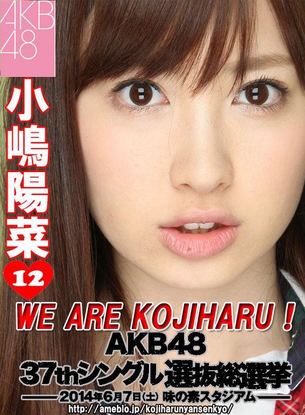 小嶋陽菜選挙2014-1
