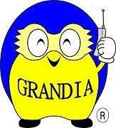 グランディア君