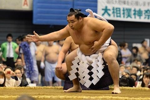 「 相撲鶴竜無料写真」の画像検索結果
