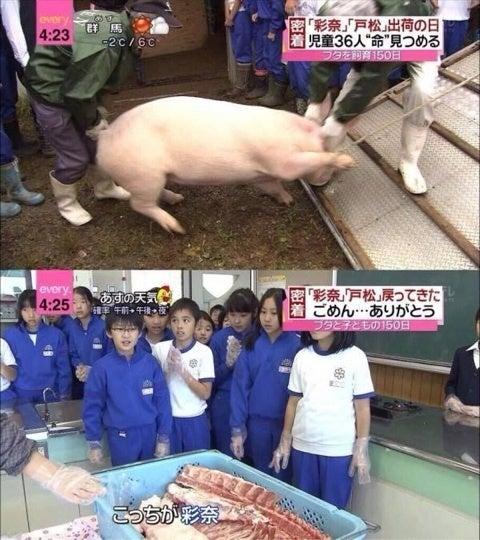 """店内に牛を吊るして""""残酷だ""""と非難殺到 店主「あなた達が食している牛を知ってほしかった」と釈明 [無断転載禁止]©2ch.netYouTube動画>1本 ->画像>79枚"""