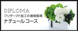 ナテュール認定講座☆プリザーブドフラワー☆スクール☆講座☆ディプロマ