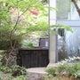 京都、花見?ハイキン…