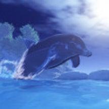 【3DCG】イルカ