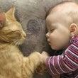 睡眠中のユメはたくさ…