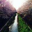 花枝聖と稲城の森BA…