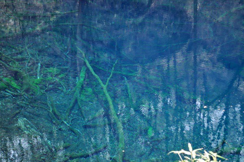 2014年4月下旬の白神山地十二湖11