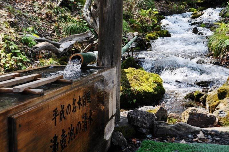 2014年4月下旬の白神山地十二湖20