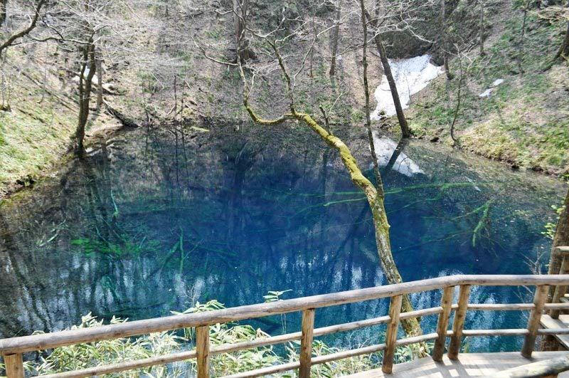 2014年4月下旬の白神山地十二湖12