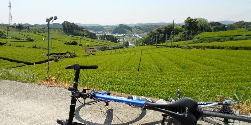03_ukarihachisan-pota