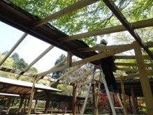 屋根、テントシートの取り付け02