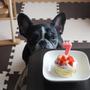 誕生日おめでとう!