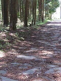 箱根旧街道石畳