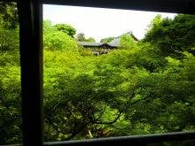 東福寺を眺める