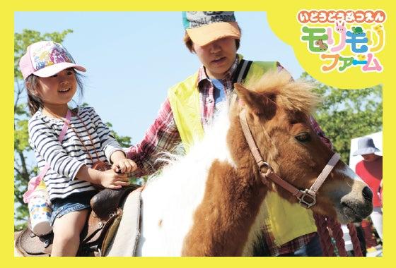 移動動物園 イベント 幼稚園 保育園 大阪 兵庫 京都 奈良