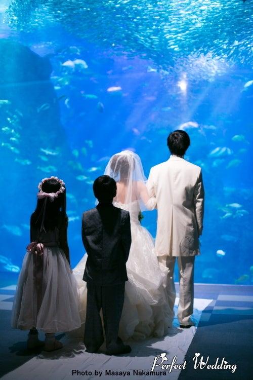 新江ノ島水族館フォトウェディング