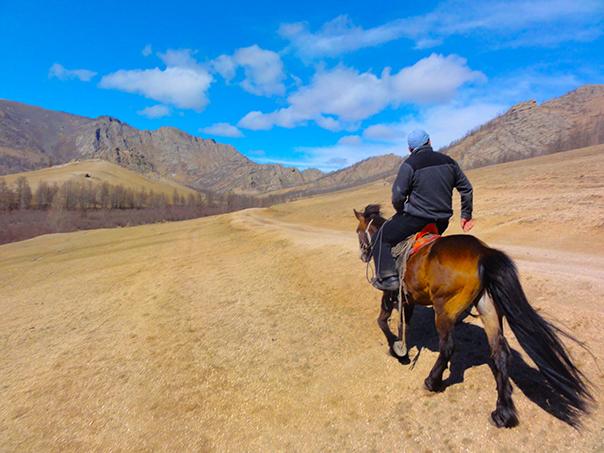馬に乗って草原を走る