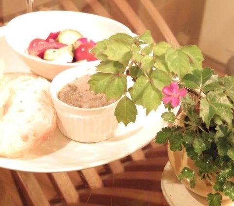 琳葉盆栽 フウロソウ ナツヅタ