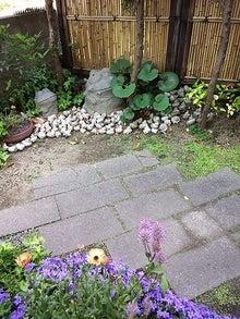 高柴さん宅の庭