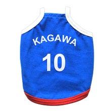 モルカップ日本代表ユニフォーム(香川/10)