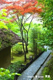 鈴虫寺 (華厳寺)