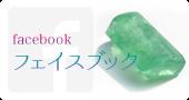 ワイオピピfacebook