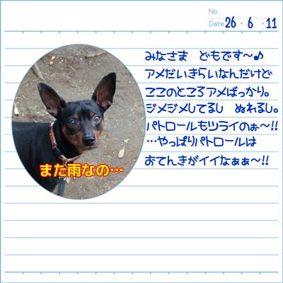 20140611-01