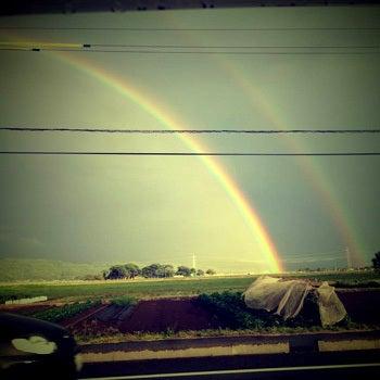 虹in八幡