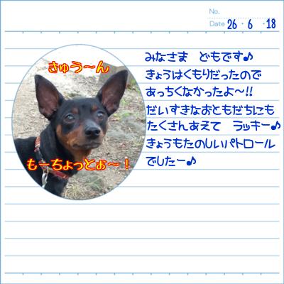 20140618-01