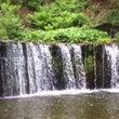 滝からのアマゾネスS…