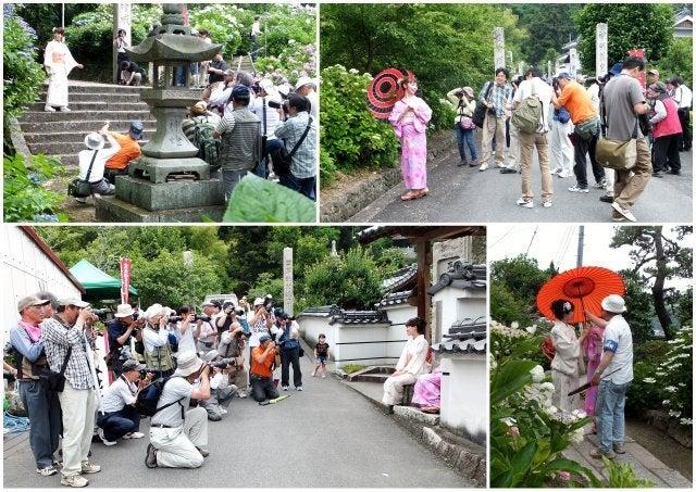 のぼるの街歩きブログあじさい祭&写真撮影会(2014年)