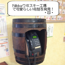 かわいい電話♪