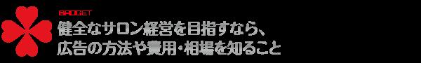 広告予算について_TORU CHANG DESIGN