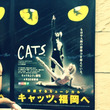 6/15 CATS