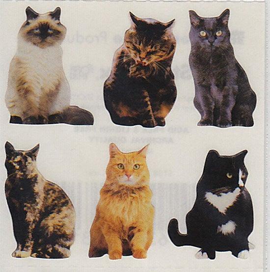 おすわり猫1
