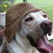 マミーの帽子 と 今…