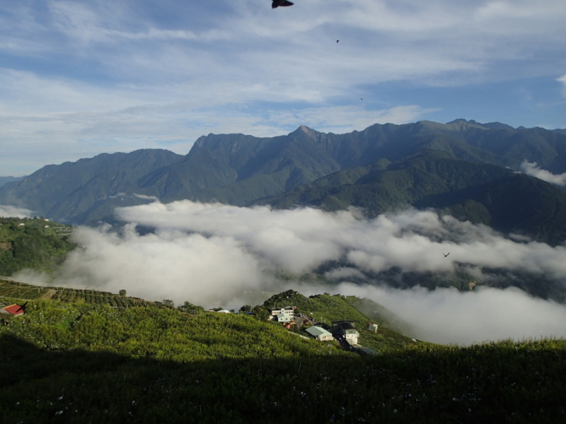 梨山からの雲海