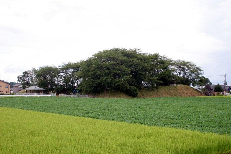 若栗城①/遠景(北東から)