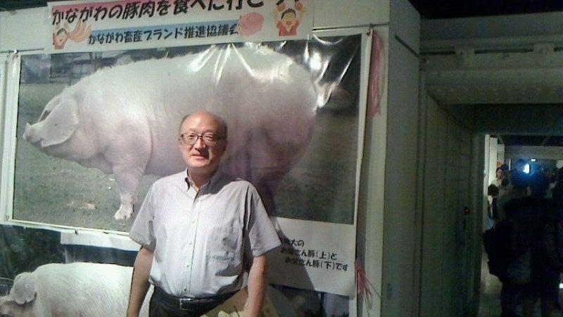 神奈川の豚2