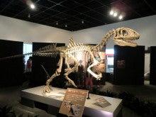 恐竜博物館⑤