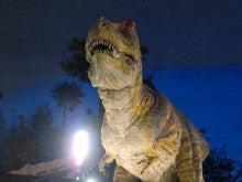 恐竜博物館⑧