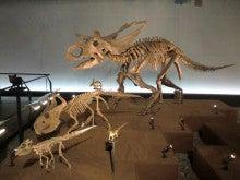恐竜博物館⑩